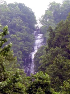 This is What We're Preserving: Amicalola Falls. www.wikipedia.org