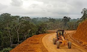 Destruction of Forests worldwildlife.org