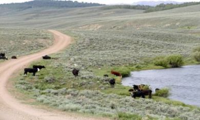 The BLM Administers About 18,000 Grazing Permits www.blm.gov