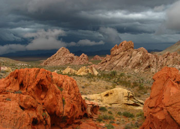 Gold Butte, Nevada wilderness.org