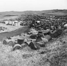 Toxic Barrels at Love Canal sites.roosevelt.edu