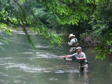Trout Fishing goldrushtu.org